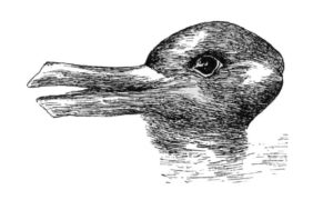 A duck or a rabbit?